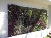 """<p>This innovative vertical garden system can be fixed easily to most surfaces. It's waterproof and weatherproof, and each sheet can hold 128 Green4Air pods in which to grow plants. </p><p><a class=""""link rapid-noclick-resp"""" href=""""https://go.redirectingat.com?id=127X1599956&url=https%3A%2F%2Fwww.ebay.co.uk%2Fitm%2FGreen4Air-Infinity-Greenwall-Fixing-Sheet-%2F383580923278&sref=https%3A%2F%2Fwww.goodhousekeeping.com%2Fuk%2Fhouse-and-home%2Fgardening-advice%2Fg32401016%2Fbest-garden-products%2F"""" rel=""""nofollow noopener"""" target=""""_blank"""" data-ylk=""""slk:BUY NOW"""">BUY NOW</a> £215</p>"""