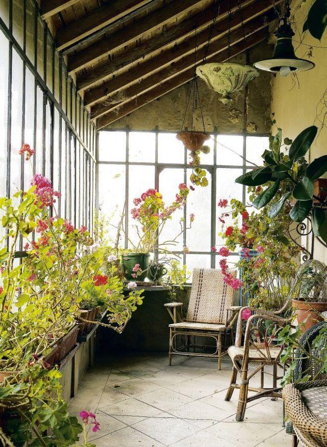 <p>Tender plants fill this garden room with colour.</p>