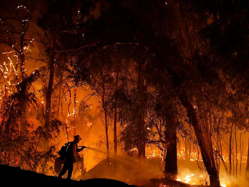 A firefighter battles a wildfire known as the Maria Fire in Somis, California in October: AP