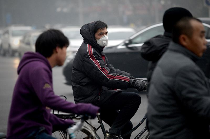 Pollution has become a major source of popular discontent with the Communist Party (AFP Photo/Wang Zhao)