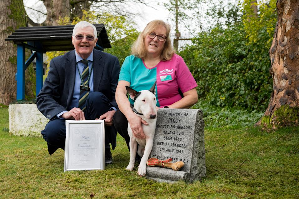 Gordon Highlanders Museum Historian Stewart Mitchell , who nominated Peggy for the award, with PDSA vet Fiona Gregge and bull terrier Billy, who accepted it on Peggy's behalf. (Picture: PDSA/Richard Frew/Newsline Media)