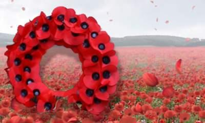 Burning Poppy Photo: Man Questioned By Police