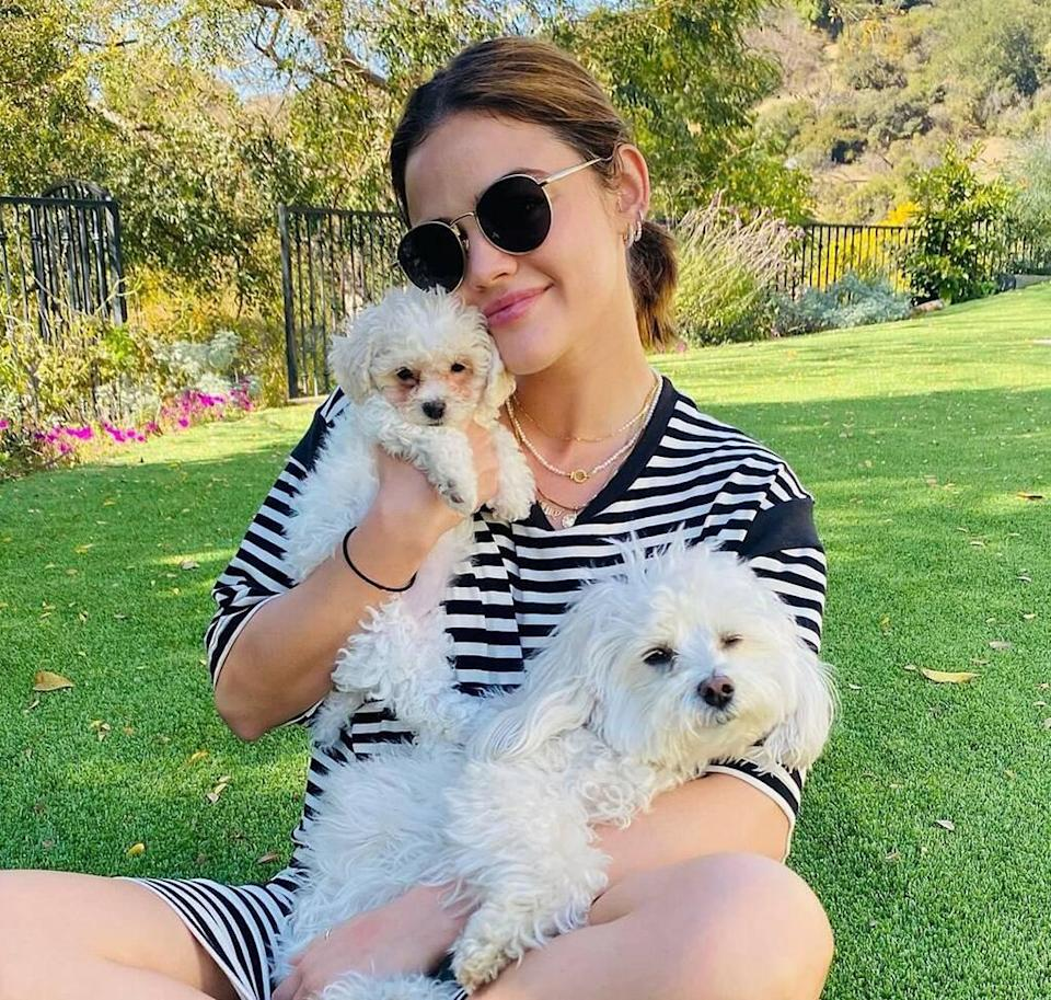 Lucy Hale, new puppy, Ethel