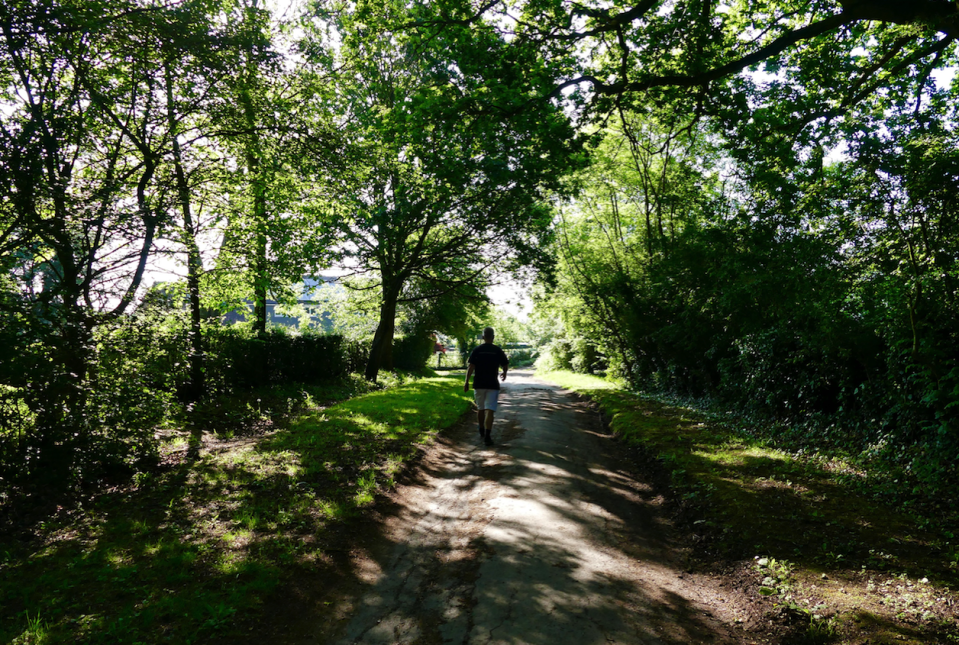 <p>Leafy Guildford offers a sanctuary from the heat (Picture: REX) </p>