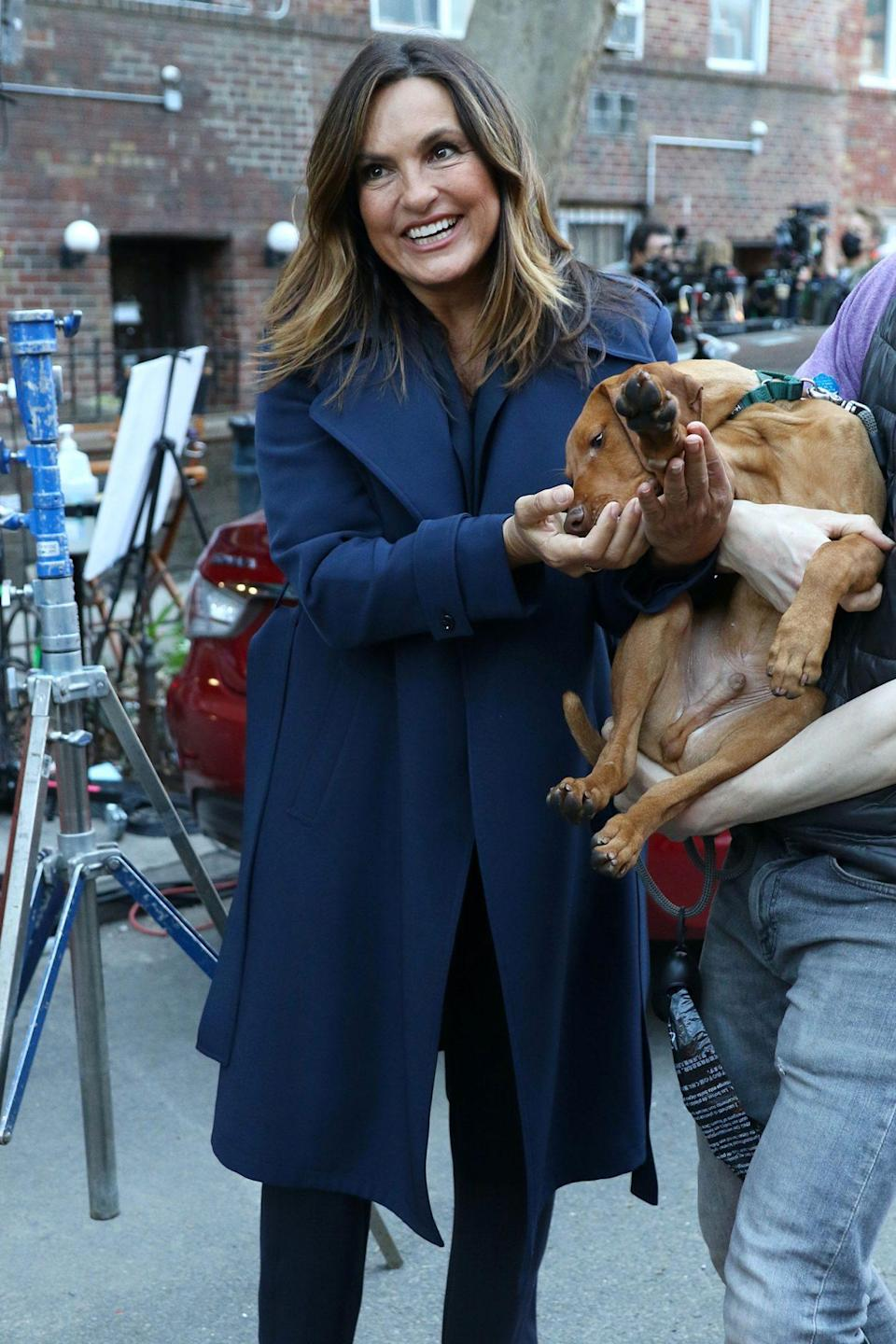 <p>Mariska Hargitay pets a canine costar on Wednesday on the New York City set of <em>Law & Order: SVU.</em></p>