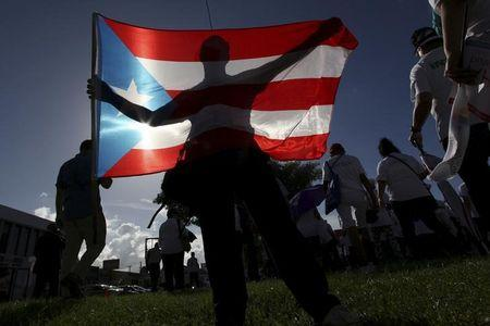 FILE PHOTO - A protester holding a Puerto Rico's flag takes part in a march to improve healthcare benefits in San Juan
