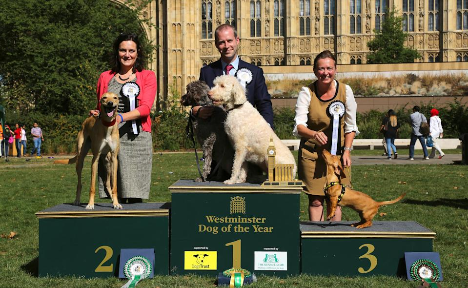 EDITORIAL USE ONLY MP Jonathan Reynolds, with Labradoodles Clinton and Kennedy, is announced as the winners of the 24th Westminster Dog of the Year competition organised jointly by Dogs Trust and The Kennel Club, at Victoria Tower Gardens in London with runners-up MP Rebecca Harris (left) and Lurcher Milo, and MP Liz Saville Roberts with Dogs Trust Rescue Dachshund Fiona.