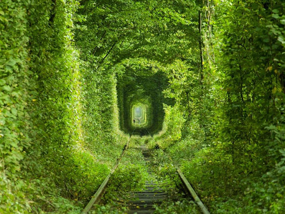 <p>Located in the bountiful forests outside of Klevan sits an enchanting verdant tunnel calling for romantics to stroll and dream. Ukraine's infamous Tunnel of Love is actually a section of the industrial railway used to transport wood to a nearby fiberboard factory. Its tunnel-like appearance was formed naturally by the surrounding trees growing in the shape of the tunnel that trains pass through. </p>