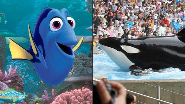 """Disney/Pixar's """"Finding Dory"""" and Magnolia Pictures' """"Blackfish"""""""
