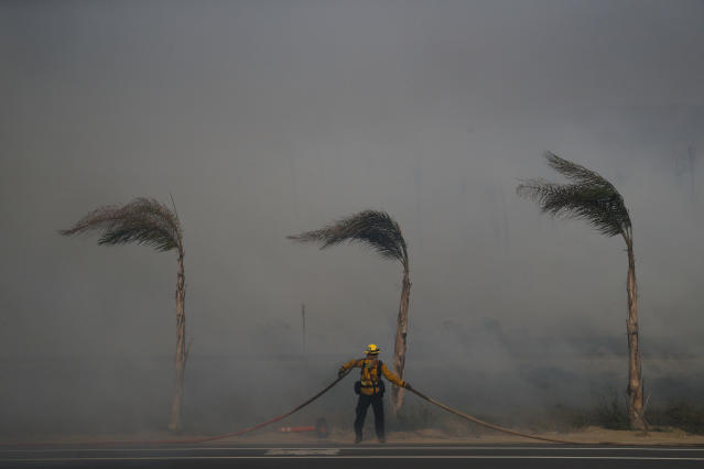 <p>Palm trees sway in a gust of wind as a firefighter carries a water hose while battling a wildfire at Faria State Beach in Ventura, Calif., Thursday, Dec. 7, 2017. (Photo: Jae C. Hong/AP) </p>