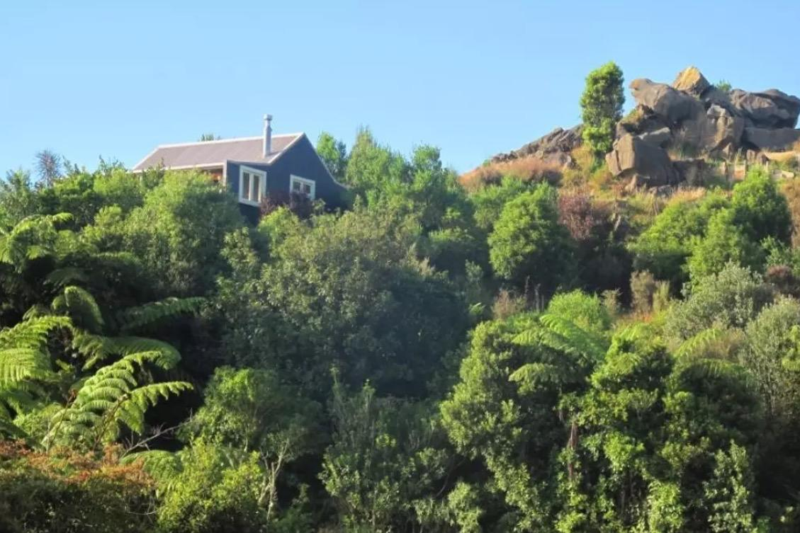 <p>The cabin is fairly isolated, and sits among the trees.<br />(Airbnb) </p>