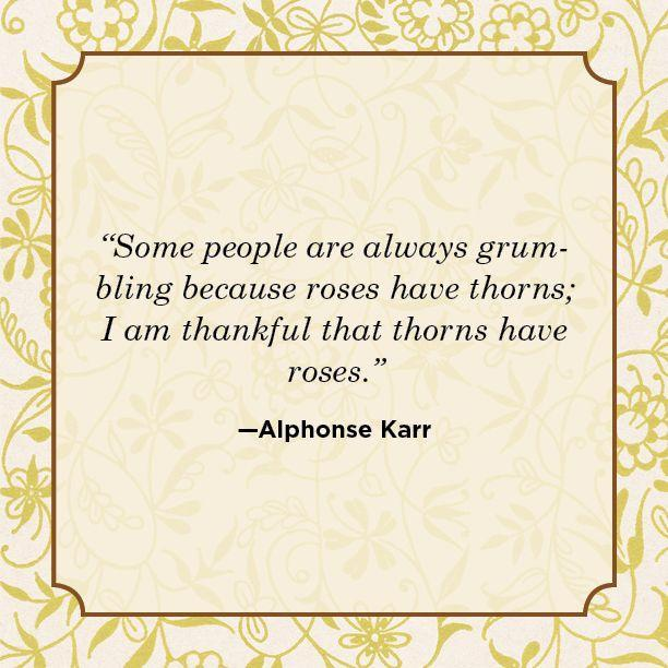 """<p>""""Some people are always grumbling because roses have thorns; I am thankful that thorns have roses.""""</p>"""