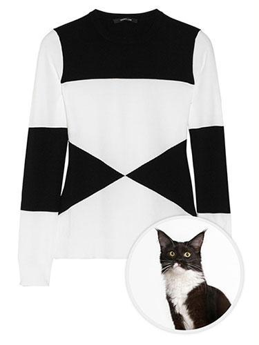 """<div class=""""caption-credit""""> Photo by: net-a-porter</div><b>Domestic Black and White Cat</b> <br> The comparison is remarkable when you couple Derek Lam's modal-blend top with a domestic black and white cat. It seems their geometrical nature are two-of-a-kind. Derek Lam Fine-Knit Modal-Blend Top, $590; <a href=""""http://www.net-a-porter.com/product/386703"""" rel=""""nofollow noopener"""" target=""""_blank"""" data-ylk=""""slk:net-a-porter.com"""" class=""""link rapid-noclick-resp"""">net-a-porter.com</a> <p> <b><a href=""""http://www.marieclaire.com/health-fitness/germy-objects-cold-flu-season?link=rel&dom=yah_life&src=syn&con=blog_marieclaire&mag=mar"""" rel=""""nofollow noopener"""" target=""""_blank"""" data-ylk=""""slk:Related: 9 Germy Objects You Don't Want To Touch"""" class=""""link rapid-noclick-resp"""">Related: 9 Germy Objects You Don't Want To Touch</a> <br> <a href=""""http://www.marieclaire.com/health-fitness/cold-flu-tips-fashion-editor?link=rel&dom=yah_life&src=syn&con=blog_marieclaire&mag=mar"""" rel=""""nofollow noopener"""" target=""""_blank"""" data-ylk=""""slk:Related: 6 Ways to Fight the Flu"""" class=""""link rapid-noclick-resp"""">Related: 6 Ways to Fight the Flu</a></b> </p>"""