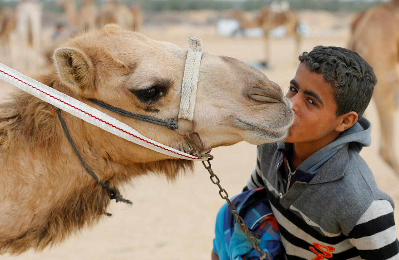 Ayman, an 11-year-old jockey, kisses his camel near the starting line during the opening of the International Camel Racing festival at the Sarabium desert in Ismailia, Egypt, March 21, 2017. Picture taken March 21, 2017. REUTERS/Amr Abdallah Dalsh