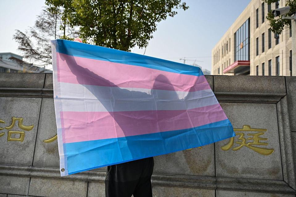 <p>Those who are transitioning or have neutral/no gender are also included in the white. Trans woman Monica Helms designed this in 1999. The blue and pink represent boys and girls, and no matter which way you hold it, the flag is always right-side up. </p>
