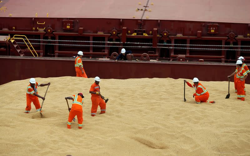FILE PHOTO: Employees working at cargo ship Kypros Land which is loading soybeans to China at Tiplam terminal in Santos