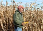 FILE PHOTO: Corn and soybean farmer Don Swanson prepares to harvest his corn crop in Eldon, Iowa