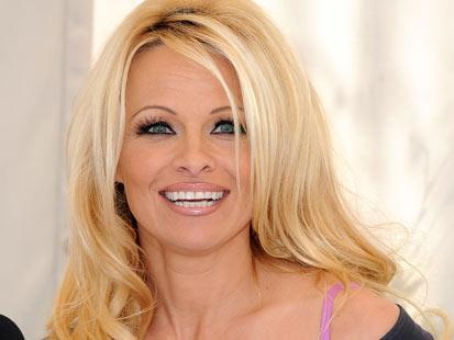 Pamela Anderson, Other Hollywood Celebrities in Delinquent Taxpayer List of Shame