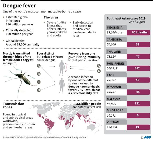 Factfile on dengue fever, one of the world's most common mosquito-borne viruses