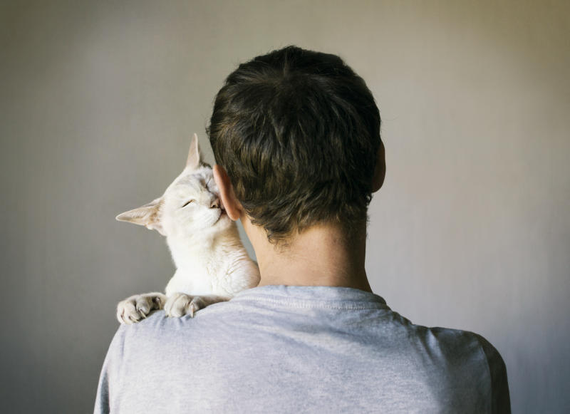 Women aren't interested in men with cats, apparently. (Getty Images)