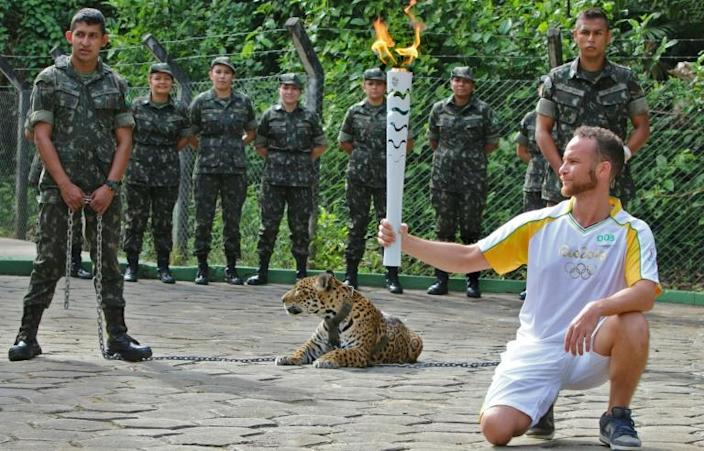 The jaguar later escaped (AFP Photo/Jair Araujo)