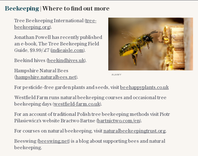 Beekeeping   Where to find out more