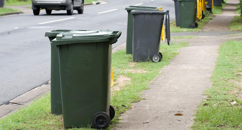 Photo shows a row of residential rubbish bins.