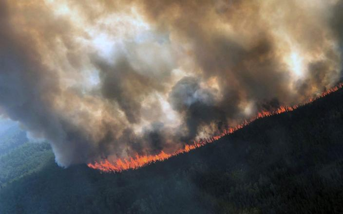 More than a hundred wildfires are burning in the Arctic - REUTERS