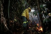 Brazilian Institute for the Environment and Renewable Natural Resources (IBAMA) fire brigade members attempt to control hot points in a tract of the Amazon jungle near Apui