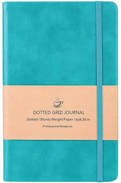 blue dotted grid journal