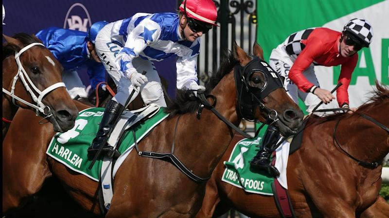 Mornington Cup Preview