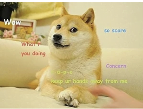 Dogecoin is based on this 2013 meme.