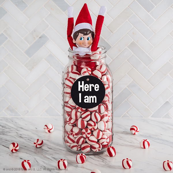 """<p>Give your kids not one, but two surprises! They'll get to see their Elf again, <em>and</em> they'll also have something sweet to snack on with this cute return idea.</p><p><strong>G</strong><strong>et the tutorial at <a href=""""https://www.elfontheshelf.com/blog/return-ideas"""" rel=""""nofollow noopener"""" target=""""_blank"""" data-ylk=""""slk:The Elf on the Shelf"""" class=""""link rapid-noclick-resp"""">The Elf on the Shelf</a>.</strong></p><p><a class=""""link rapid-noclick-resp"""" href=""""https://www.amazon.com/Bobs-Sweet-Stripes-Mints-Peppermint/dp/B01E7AI6LI/ref=sr_1_2?tag=syn-yahoo-20&ascsubtag=%5Bartid%7C10050.g.29656008%5Bsrc%7Cyahoo-us"""" rel=""""nofollow noopener"""" target=""""_blank"""" data-ylk=""""slk:SHOP MINT CANDIES"""">SHOP MINT CANDIES </a></p>"""