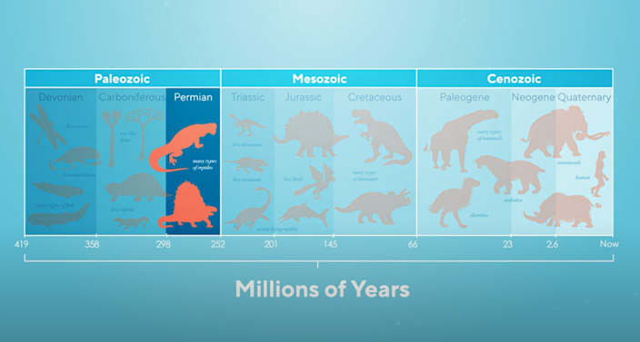 The biggest mass extinction ever seen on Earth is a warning to mankind