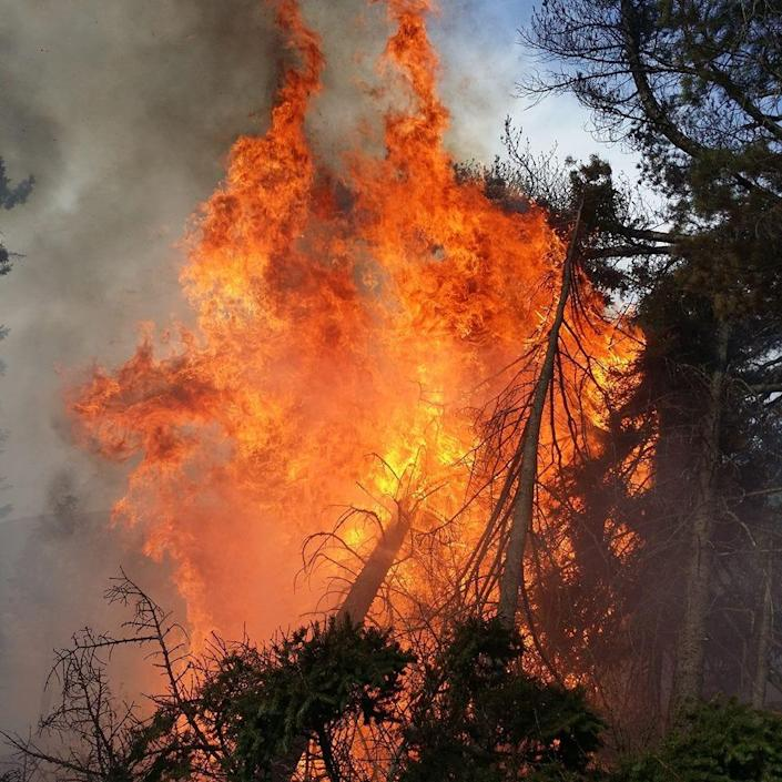 A forest fire occurring in the Bald Mountain Township in Maine.