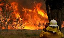 A firefighter on property protection watches the progress of bushfires in Old Bar, New South Wales