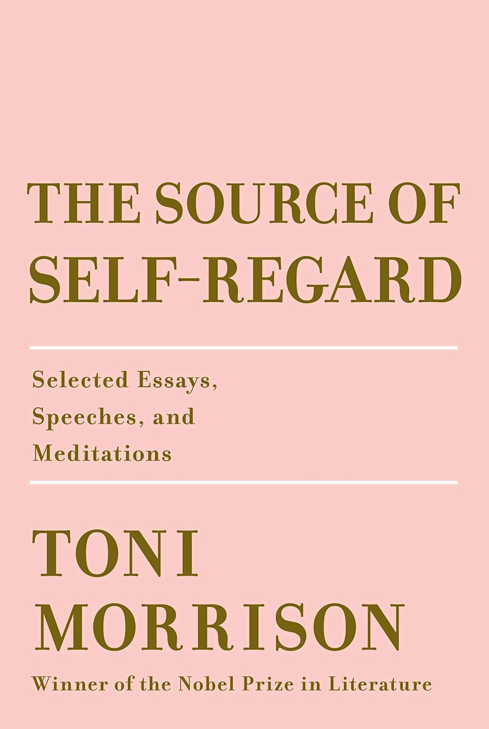 From the writer who gave us <em>Beloved,</em> <em>The Bluest Eye,</em> <em>Sula,</em> and so many other incredible classics, this nonfiction collection is a look back at her life and career, which ended with her death in August. In <em>The Source of Self-Regard,</em> Morrison compiled essays, speeches, and thoughts on culture over the past four decades. She writes about female empowerment, money, human rights, and black culture, and offers new commentary on her own novels. This book is an intimate look at this literary powerhouse—and a peek inside her mind.