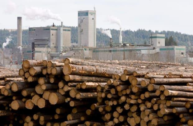 West Fraser Timber Co. Ltd, Canada's largest lumber manufacturer, revealed last month that its B.C. sawmills will be paying the province an additional $30 per cubic metre for Crown timber starting July 1. (The Canadian Press/Jonathan Hayward - image credit)