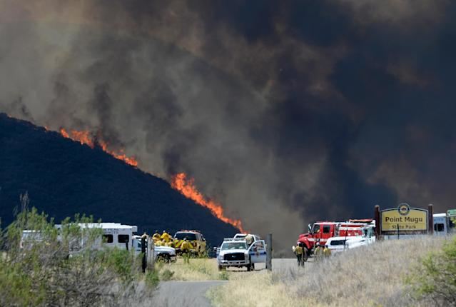 NEWBURY PARK, CA - MAY 03: Wildfire charges back up from Sycamore Canyon inside Pt. Mugu State Park after changing winds on May 3, 2013 in Newbury Park, California. Hundreds of firefighters are battling wind and dry conditions with over 10,000 acres already burned. (Photo by Kevork Djansezian/Getty Images)