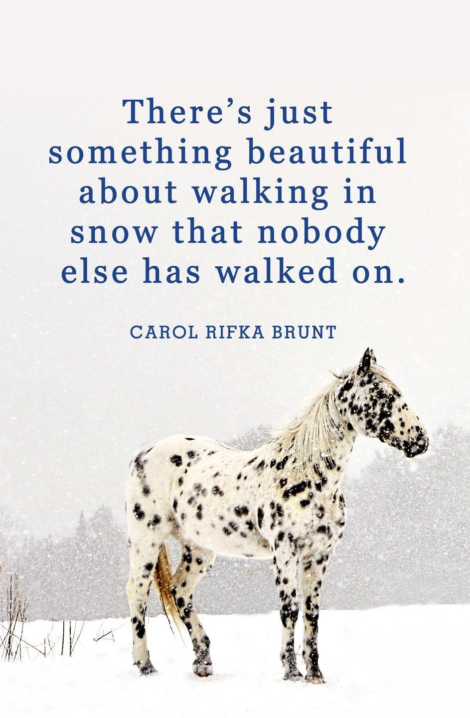 "<p>""There's just something beautiful about walking in snow that nobody else has walked on. It makes you believe you're special.""</p>"