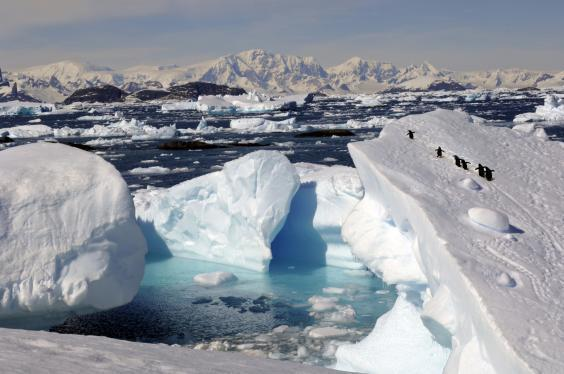 Reaching Antarctica as a solo traveller doesn't have to break the bank (Getty/iStockphoto)