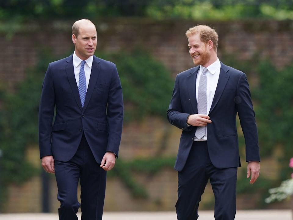 The princes joking together (PA)