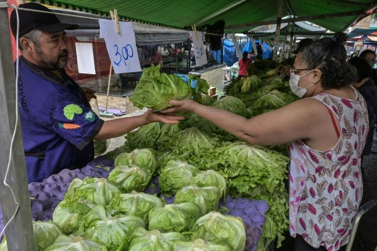 A woman shops at Feira Livre market in Sao Paulo, Brazil -- inflation is running high, especially on food (AFP/NELSON ALMEIDA)
