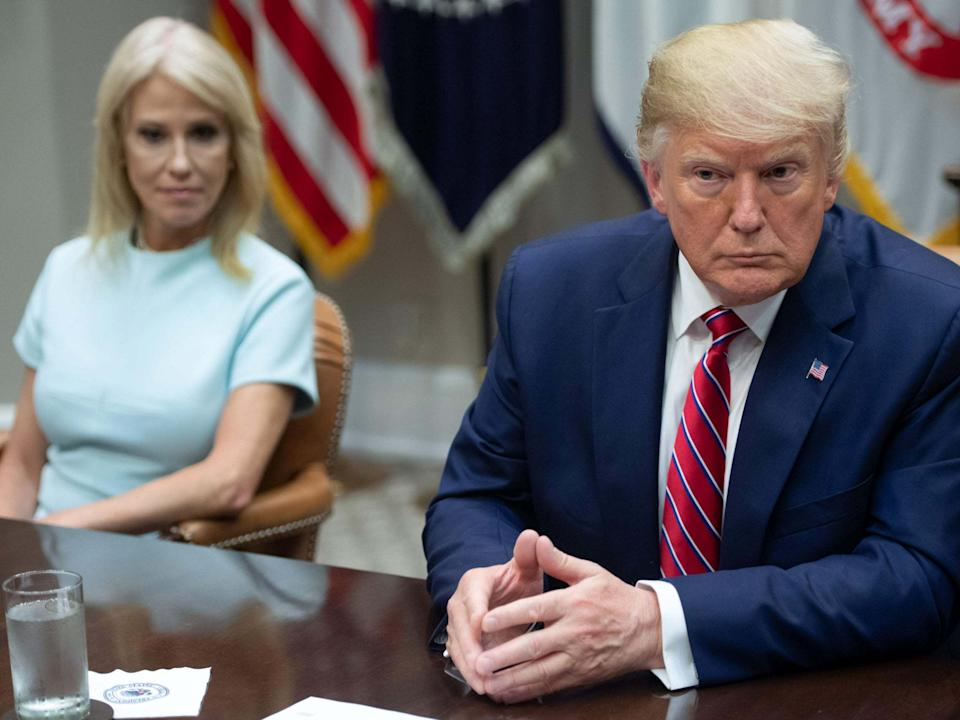 Kellyanne Conway repeatedly flouted US laws banning engagement in political activity while in office: AFP/Getty Images