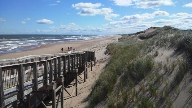 The Malpeque riding includes P.E.I.'s picturesque North Shore. (Rick Gibbs/PEI - image credit)