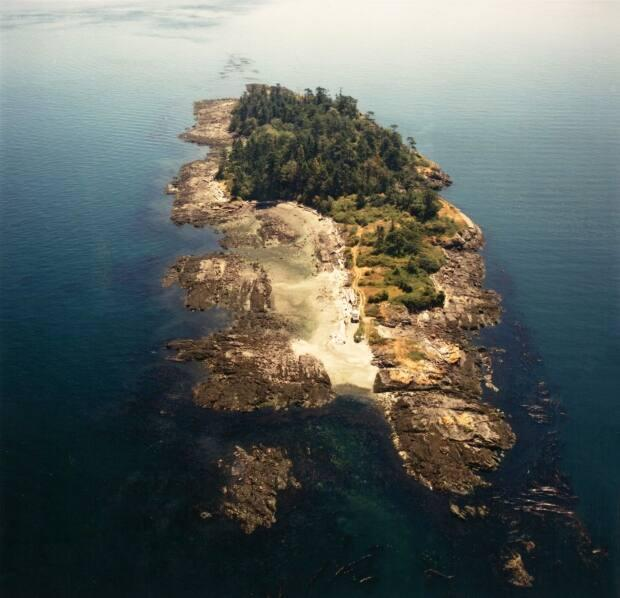 SISȻENEM, also known as Halibut Island, is a 9.67-acre island off the east coast of Sidney Island near Victoria.  (Land Conservancy of B.C. - image credit)
