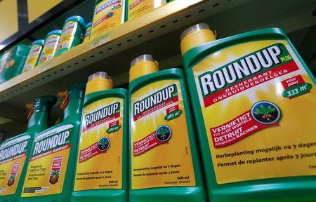 Monsanto's Roundup weedkiller atomizers are displayed for sale at a garden shop near Brussels