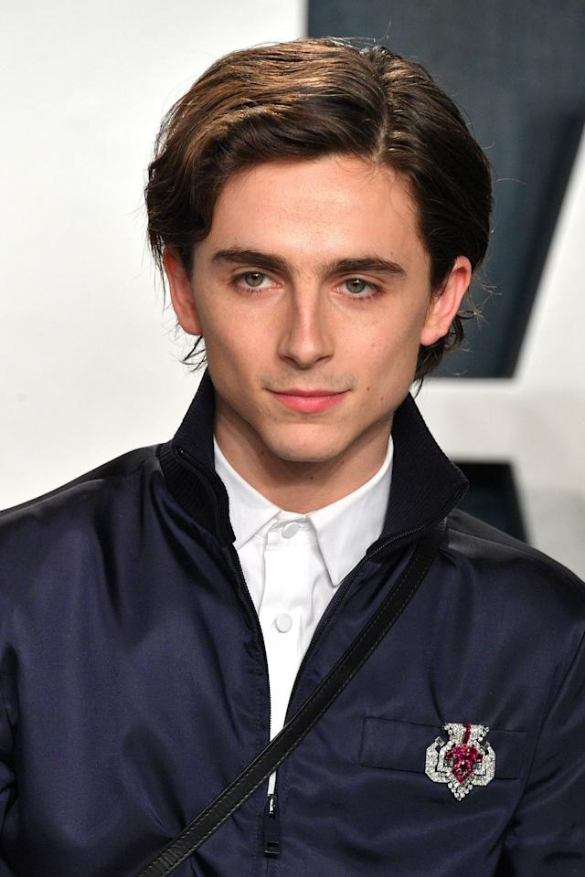 <p>Chalamet wore a vintage Cartier brooch from 1955, created in white gold, platinum, rubies and diamonds.  </p>
