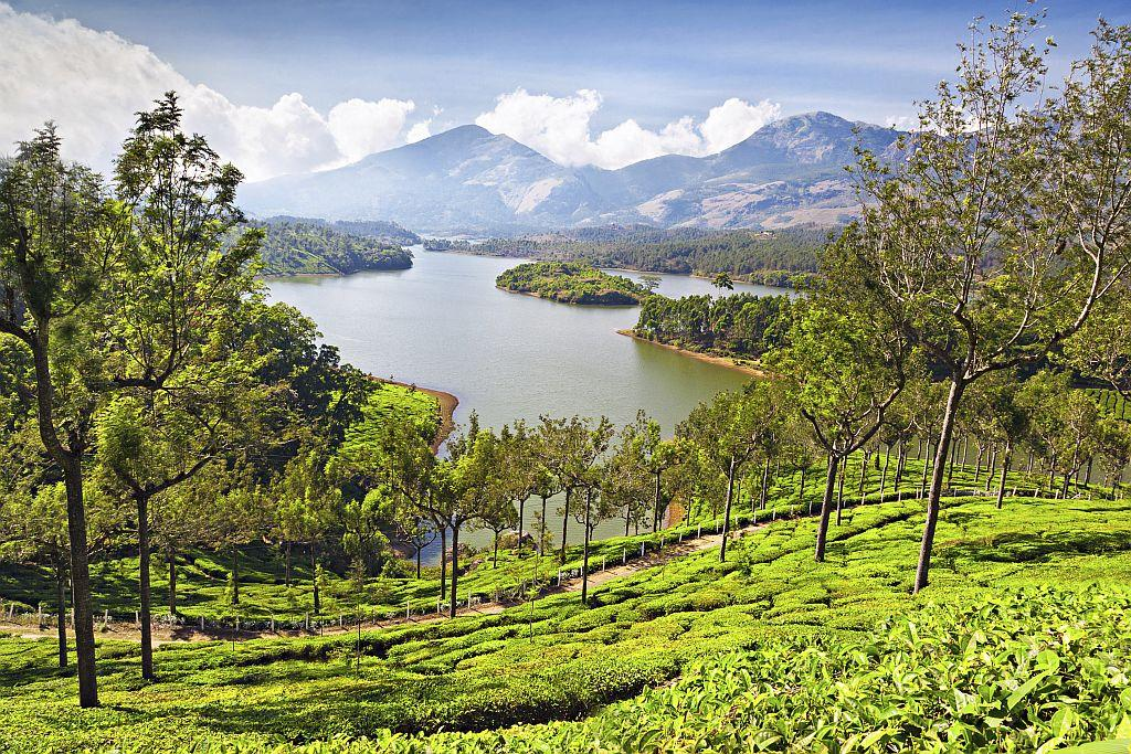 """<strong>3. MUNNAR</strong><br />For women looking for a dreamlike vacation where gardens with tea leaves glisten in the sun, mornings begin with clouds drifting into your room and where life has a different momentum to it, Munnar beckons. Locals are friendly and travelling within the town is cheap. HolidayIQ traveller Urwashi from Mumbai says, """"It's not just Munnar but the journey to Munnar too is a spectacular experience."""" Go here for its scenic beauty and """"visit its tea gardens and tea factory where you will get nice flavoured tea and coffee,"""" says HolidayIQ traveller Shwetha from Mumbai."""