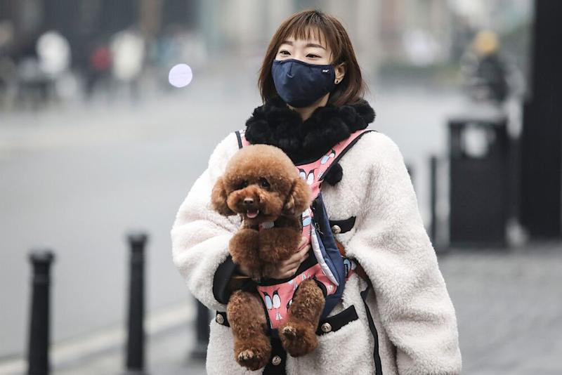 Woman wears mask while carrying dog in Wuhan, China, on Jan. 22. | Getty